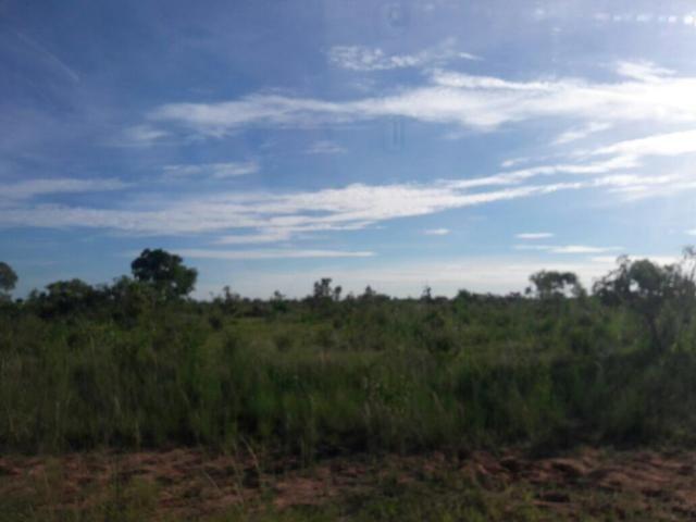 Fazenda dupla aptidão Arinos MG - Foto 8