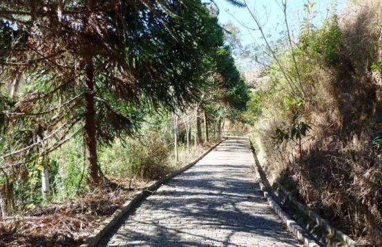 Sítio rural à venda, Providência, Teresópolis. - Foto 15