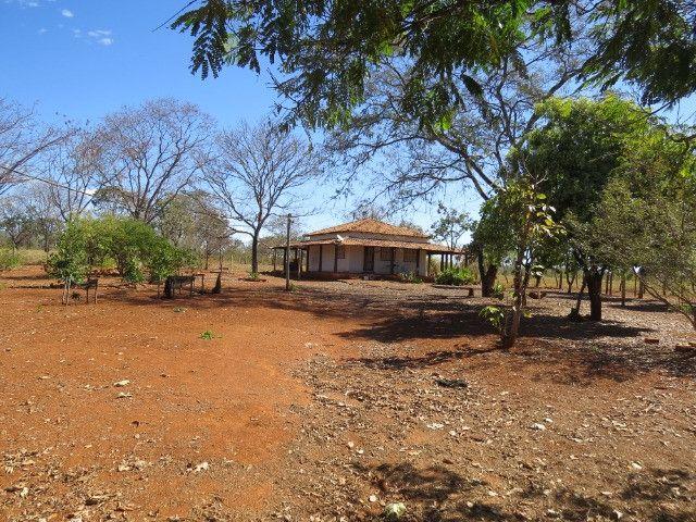 Fazenda em Corinto com área de 100 há, sede boa, curral, 70% formada - Foto 16