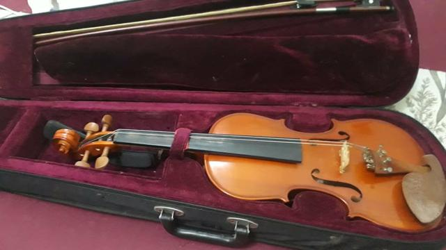 Violinos - Foto 5