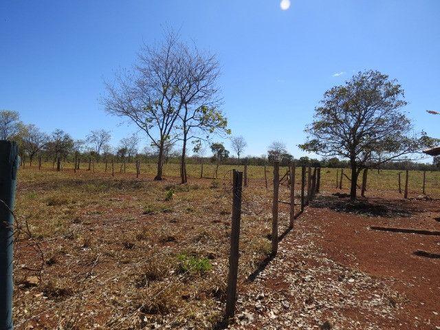 Fazenda em Corinto com área de 100 há, sede boa, curral, 70% formada - Foto 11