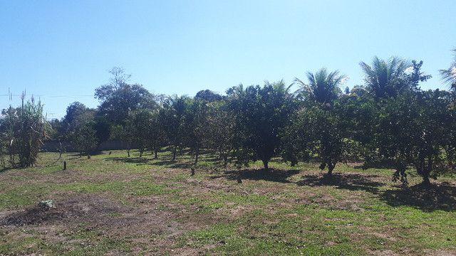 Sitio 10,000m2 em Itaboraí / Agro Brasil !! completo - Foto 11