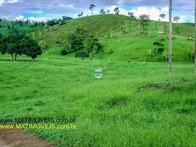Itaju do Colônia. Linda Fazenda pecuária de 375 Hectares - Foto 17