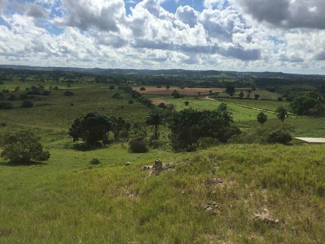 Fazenda na Cidade de Mata de São João - Foto 14