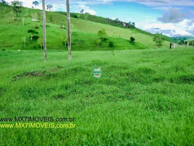 Itaju do Colônia. Linda Fazenda pecuária de 375 Hectares - Foto 16