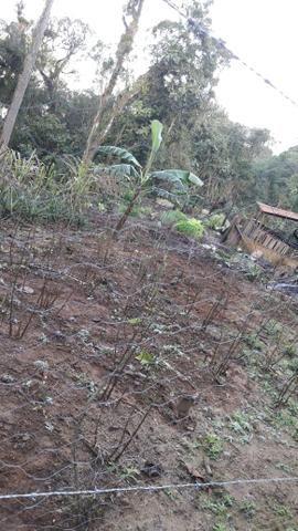 Chácara área rural porteira fechada - Foto 8