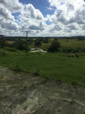 Fazenda na Cidade de Mata de São João - Foto 4