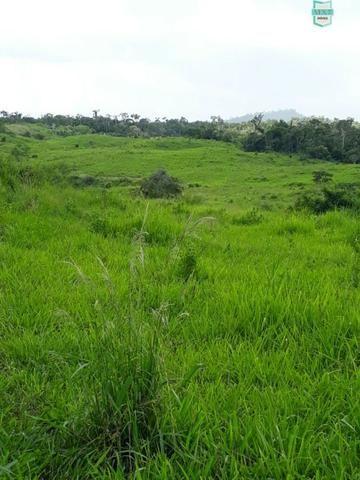 Itaju do Colônia. Fazenda de 400 Hectares. para pecuária. - Foto 14