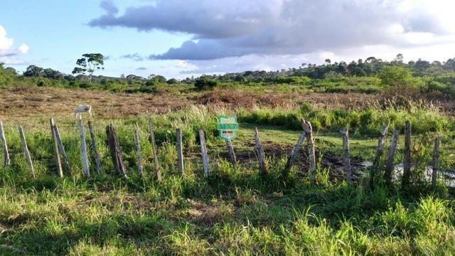 Itagibá. Fazenda pecuária de 375 Hectares com toda infraestrutura. - Foto 8