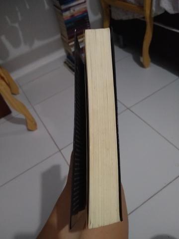 A hospedeira - Livro - Foto 3