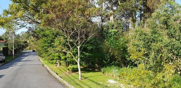 Loteamento/condomínio à venda em Granja viana ii, Cotia cod:61917 - Foto 2