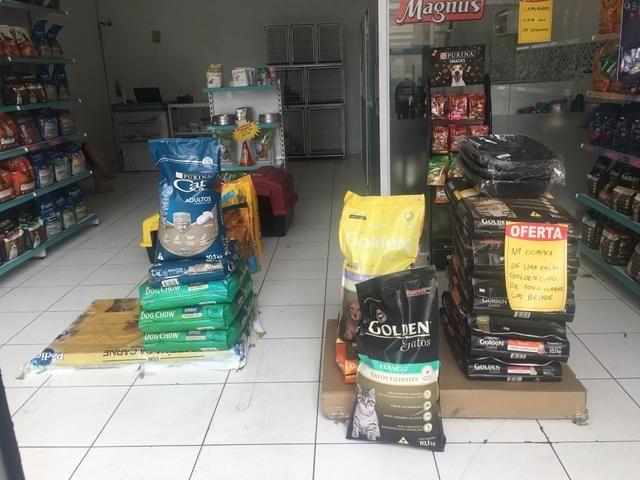 Vendo pet shop - Foto 2