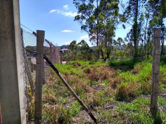 Terreno à venda em Pavão (canguera), São roque cod:61928 - Foto 5