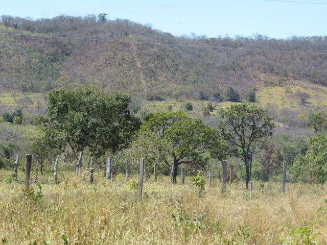 Fazenda em Augusto de Lima com área de 350 há, toda formada - Foto 10