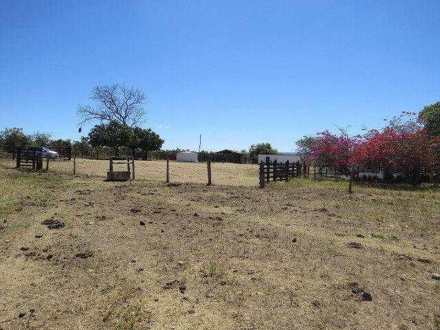 Fazenda em Augusto de Lima com área de 350 há, toda formada - Foto 7