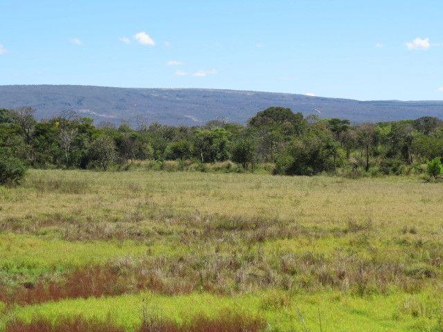 Fazenda com área de 63 há, as margens do Rio das velhas em Corinto - Foto 11