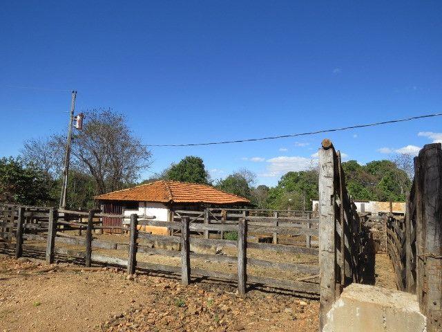 Fazenda em Corinto com área de 100 há, sede boa, curral, 70% formada - Foto 19