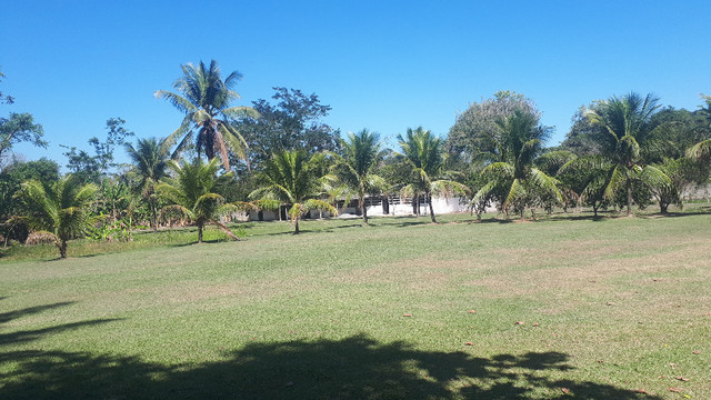 Sitio 10,000m2 em Itaboraí / Agro Brasil !! completo - Foto 17
