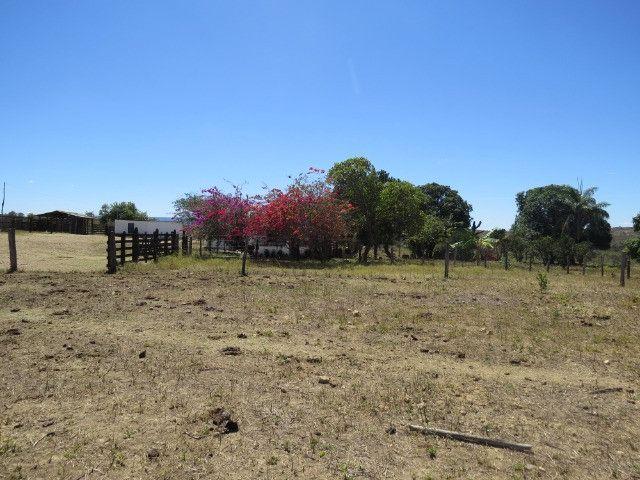 Fazenda em Augusto de Lima com área de 350 há, toda formada - Foto 2