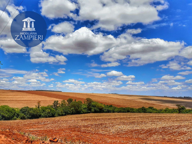 Sítio de  10,5 alqueires, ótima localização, em Iguaraçu, PR - Foto 5