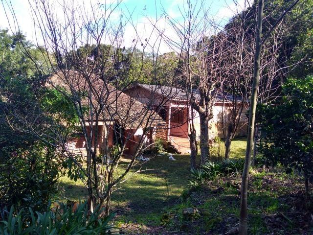 Chácara em Morro Reuter com 2 casas, pomar, mata, araucárias - Foto 8