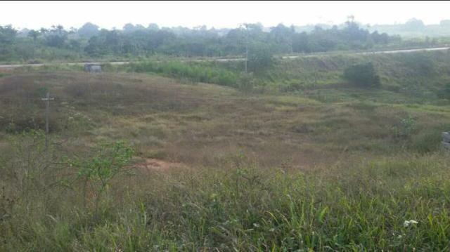 Meia hectares de terra
