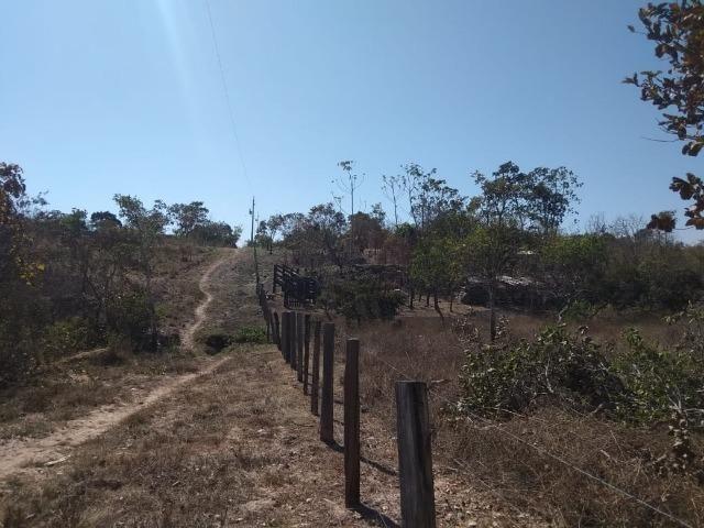 Chácara km 22 estrada da guia - Foto 2