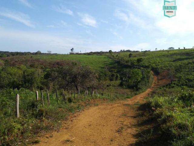 Maraú. Fazenda de 710 Hectares com diversas atividades de produção e rica em água - Foto 2