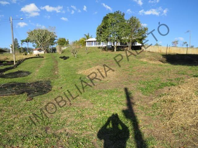 REF 1278 Sítio 50.000 m² , frente ao asfalto, rico em água, Imobiliária Paletó - Foto 17