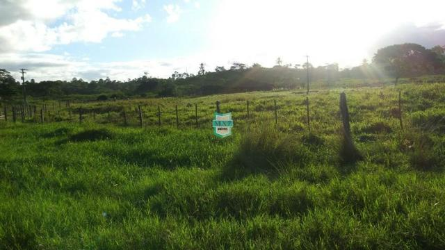 Itagibá. Fazenda pecuária de 375 Hectares com toda infraestrutura. - Foto 19