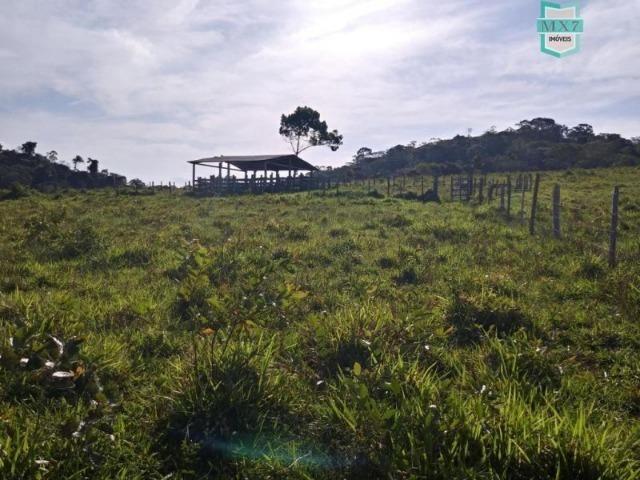 Maraú. Fazenda de 710 Hectares com diversas atividades de produção e rica em água - Foto 19