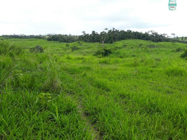 Itaju do Colônia. Fazenda de 400 Hectares. para pecuária. - Foto 4
