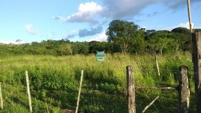 Itagibá. Fazenda pecuária de 375 Hectares com toda infraestrutura. - Foto 20