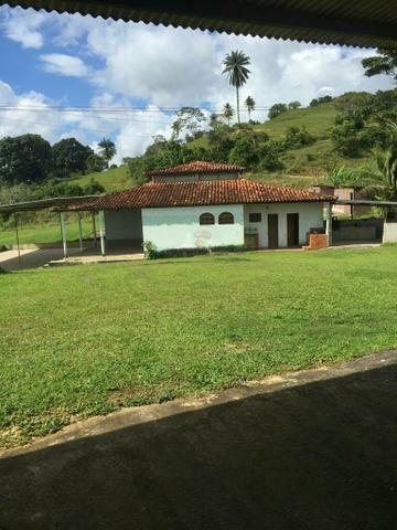 Fazenda na Cidade de Mata de São João - Foto 7