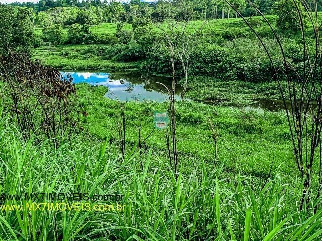 Itaju do Colônia. Linda Fazenda pecuária de 375 Hectares - Foto 13