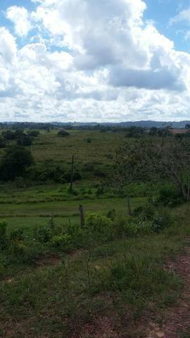 Fazenda na Cidade de Mata de São João - Foto 20