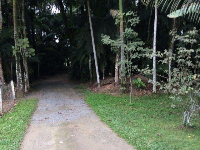 Chácara para alugar em Vila nova, Joinville cod:L58656 - Foto 14