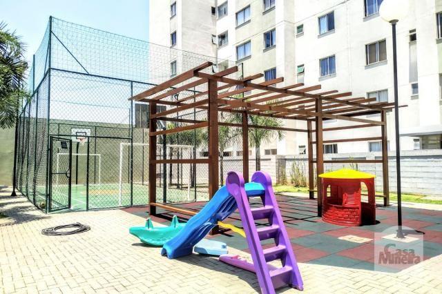 Apartamento à venda com 3 dormitórios em Caiçaras, Belo horizonte cod:256280 - Foto 19