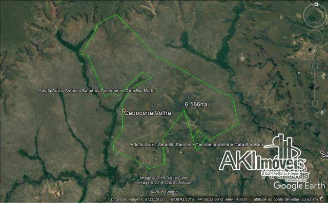 Fazenda à venda, 690000000 m² por r$ 172.500.000,00 - centro - fernando falcão/ma - Foto 3