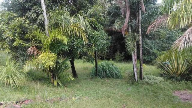 Chácara à venda em Centro, Itu cod:60014 - Foto 19