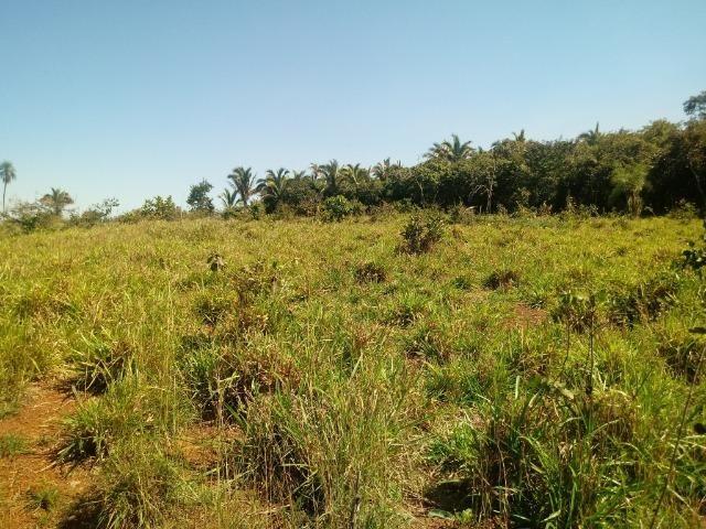 Chácara de 39 hectares em Acorizal ! - Foto 11