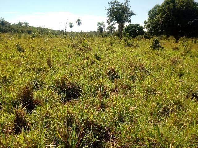 Chácara de 39 hectares em Acorizal ! - Foto 16