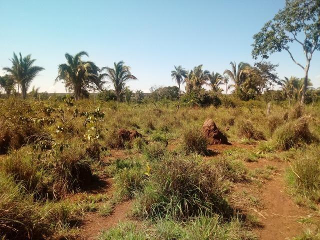 Chácara de 39 hectares em Acorizal ! - Foto 5