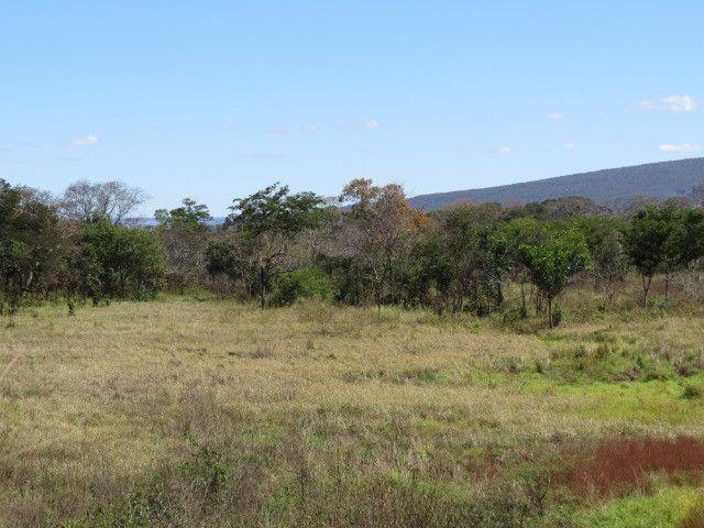 Fazenda com área de 63 há, as margens do Rio das velhas em Corinto - Foto 17