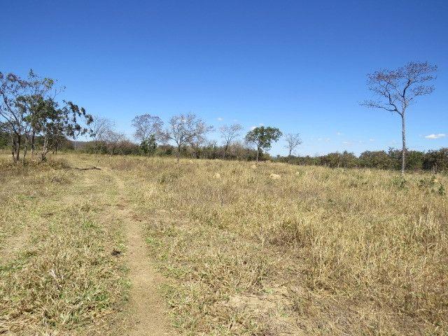 Fazenda em Augusto de Lima com área de 350 há, toda formada - Foto 16