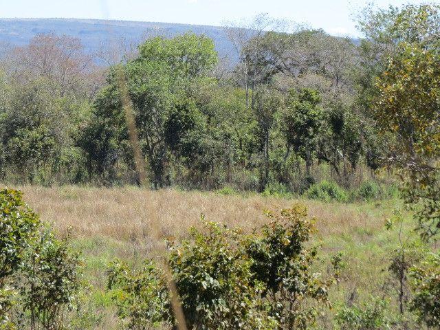 Fazenda com área de 63 há, as margens do Rio das velhas em Corinto - Foto 8