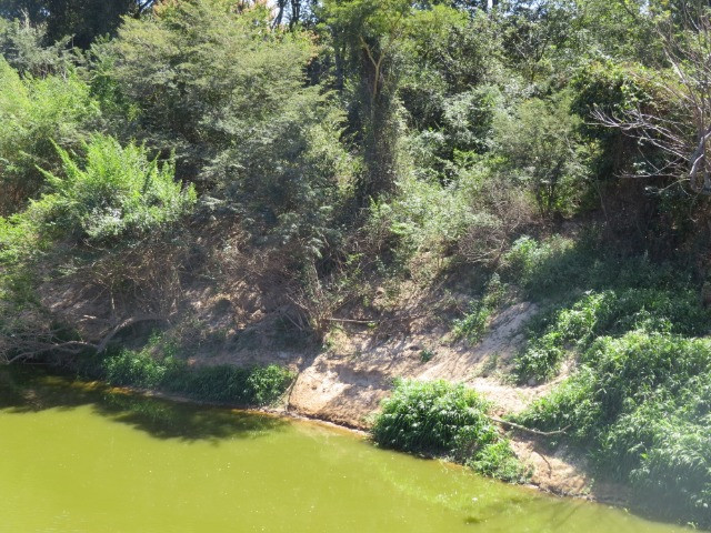 Chácara de 500m2 em Corinto, as margens do Rio das velhas. R$40 mil, Ideal para pescadores - Foto 18