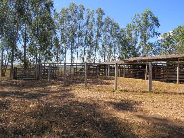 Fazenda com área de 600 há, localizada à 20 km/Corinto - Foto 11
