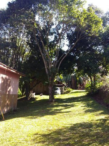 Chácara em Morro Reuter com 2 casas, pomar, mata, araucárias - Foto 6