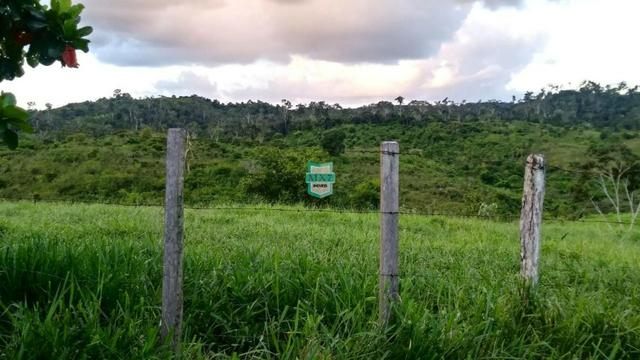 Itagibá. Fazenda pecuária de 375 Hectares com toda infraestrutura. - Foto 15